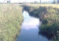 Расчистку русла реки Джемуха
