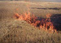 В крае ожидается высокая пожароопасность