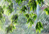 На Ставрополье прогнозируют дожди