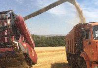 100 тысяч тонн зерна